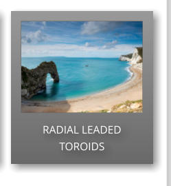 RADIAL LEADED TOROIDS